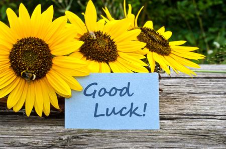 Zonnebloemen en kaart goed geluk Stockfoto