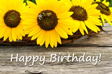 Sunflowers and  card with lettering Congratulations Banco de Imagens