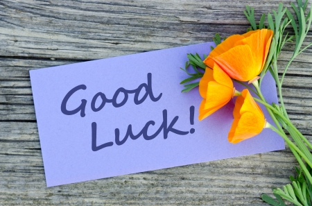 good luck: Poppy and violet card with lettering good luck Stock Photo