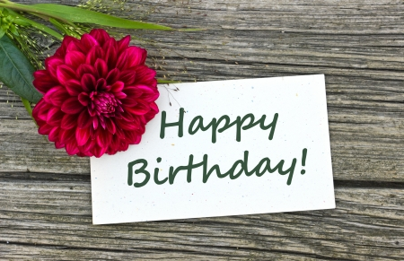 Birthday card with red flower Stock Photo - 23836589