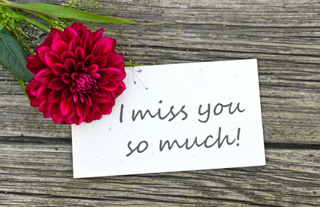 card I miss you so much with red flower Stock Photo