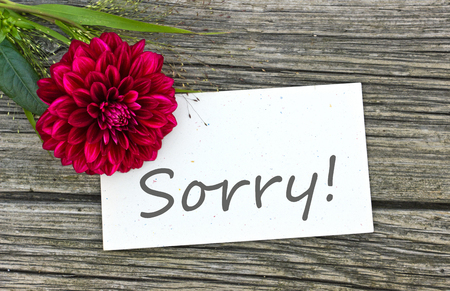 pardon: card sorry with red flower
