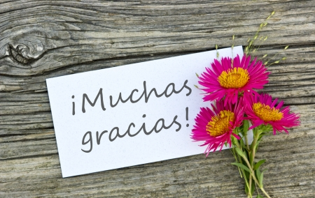White card with lettering thank you and red flowers photo