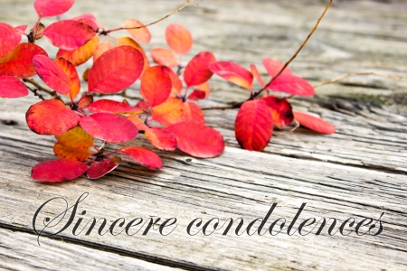 condolence: Condolence with twig with red leaves Stock Photo