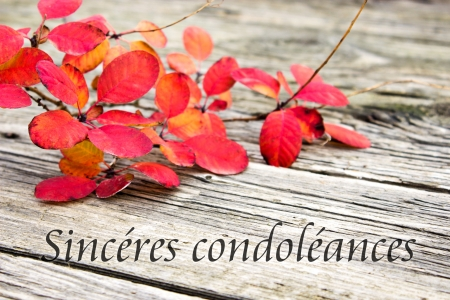 Condolence with twig with red leaves Stock Photo