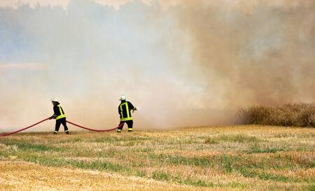 ein Maisfeld brennt Standard-Bild