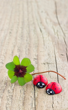 Leafed clover and ladybugs on wooden board