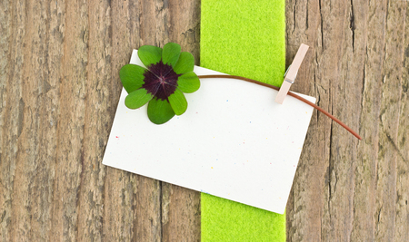 leafed: Leafed clover and card on wooden board