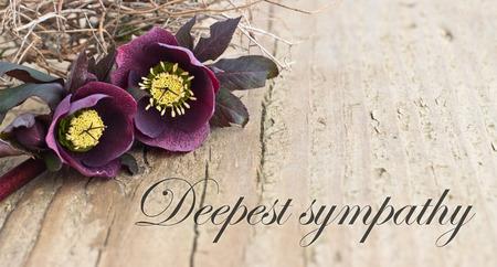 condoleance kaart met donkere christroses Stockfoto
