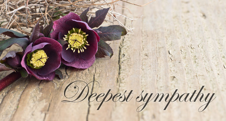 condolence card  with dark christroses Stock Photo