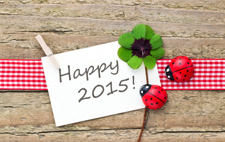 new year card with leafed clover and ladybugs