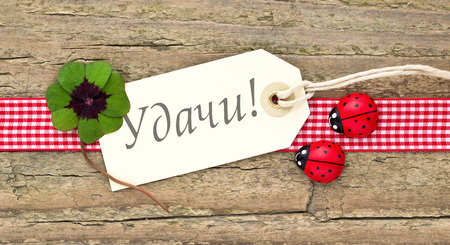 Leafed clover, ladybugs and card on wooden board  photo