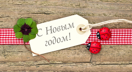 new year card with leafed clover and ladybugs photo