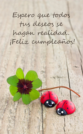 Birthday card with leafed clover and ladybugs photo
