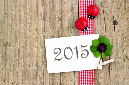 leafed: new year card with leafed clover ladybugs