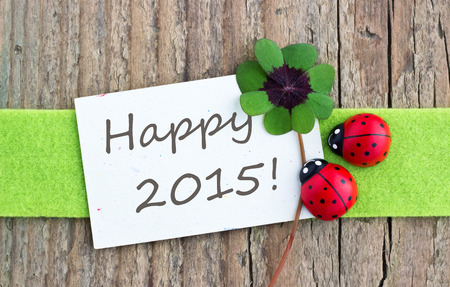 leafed: new year card with leafed clover and ladybugs