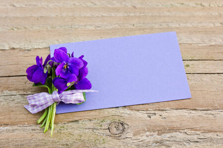 violets: bunch of violets and card