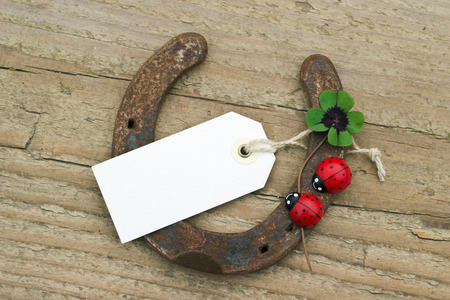 horseshoe with ladybugs and lucky clover photo