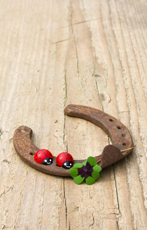 horseshoe with ladybugs and lucky clover