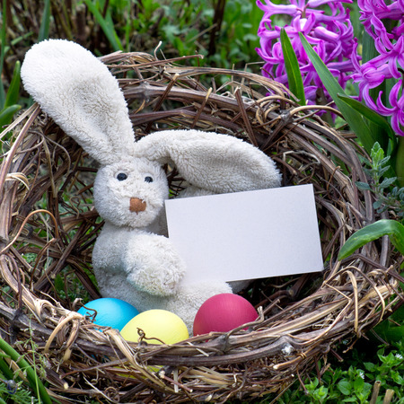 Easter bunny with easter eggs and card in a nest photo