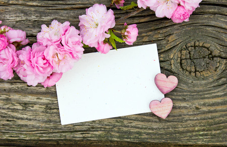Pink blossoms with white card and heart Standard-Bild