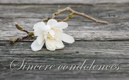 luto: tarjeta de duelo con magnolia blanca