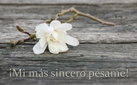 spanish mourning card with white magnolia