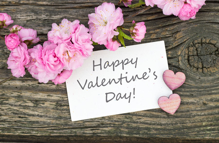 Valentines Day card with Pink blossoms and hearts photo