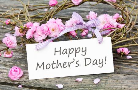 mothers day: Mother s day card with Pink blossoms