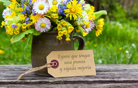 Spanish Get well card with spring flowers photo