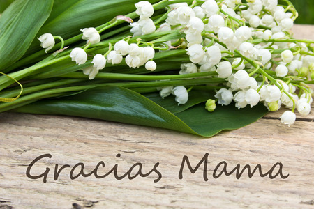italian Mother s day card with Lily of the valley Standard-Bild