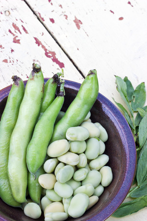 bowl with broad beans on a table photo