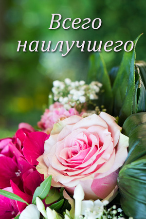 Russian Birthday Card With Pink Flowers Stock Photo Picture And