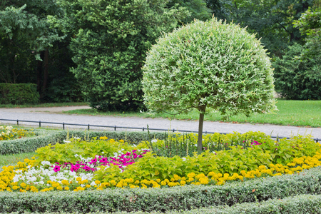 rebates: descuentos con flores de verano y sauce arlequ�n