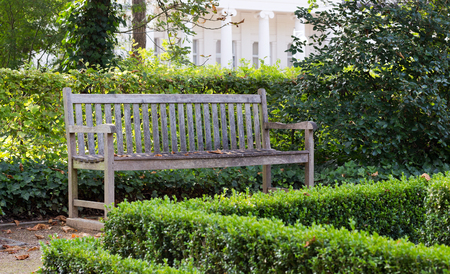 sch: Wooden bench in the park with boxwood hedge