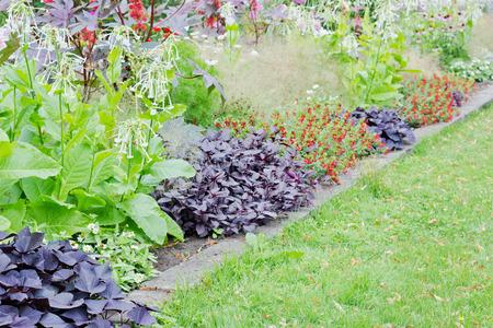rebates: descuentos con flores de verano y hierba