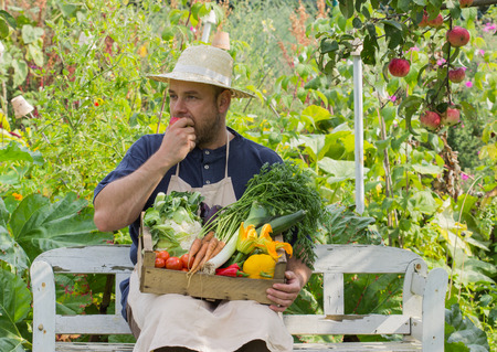 Man with fresh vegetables in a box photo
