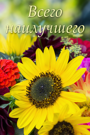Russian Birthday Card With Summer Flowers Stock Photo Picture And