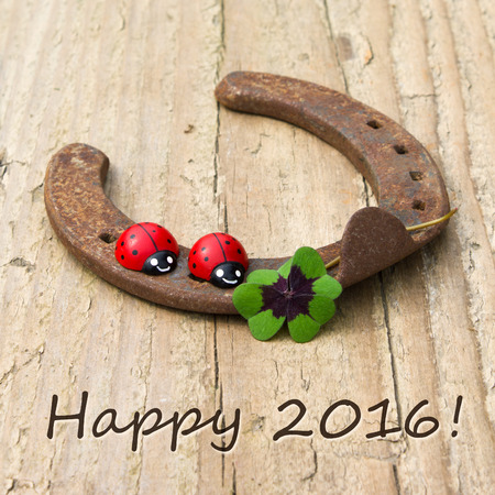 New Years card with horseshoe, clover and ladybugs Leafed photo