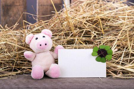 cloverleaf: Lucky pig with cloverleaf and card Stock Photo