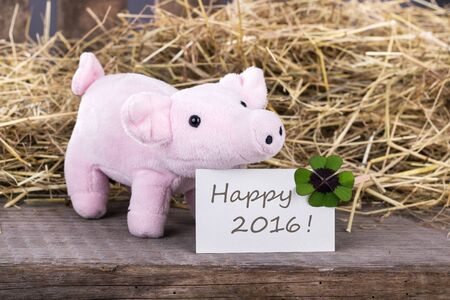 cloverleaf: Lucky pig with cloverleaf and card with text Happy 2016