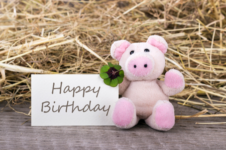 english text: Lucky pig with cloverleaf and card with english text Happy birthday