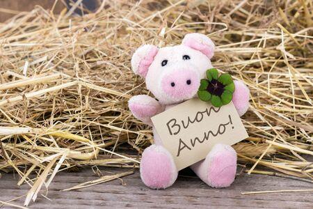cloverleaf: Lucky pig with cloverleaf and card with italian text Happy New Year Stock Photo