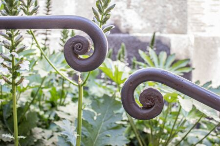 banister: Detail of a banister on the Capitol Hill in Rome with acanthus leaves in the background