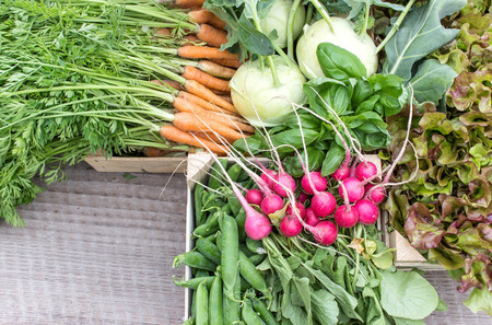 herbs boxes: Fresh turnip, pea pods, carrots, lettuce and radishes cut Stock Photo