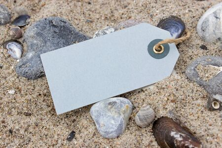 counterparts: Counterparts, stones and shells in beach sand