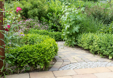 ornamental garden: Ornamental garden with green plants and garden path