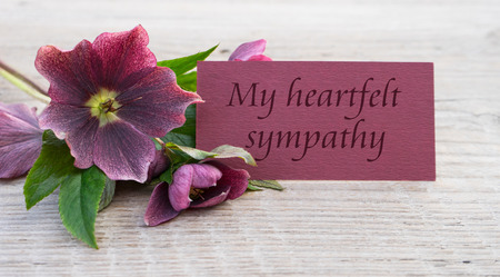 heartfelt: English Mourning card with purple hellebores Stock Photo