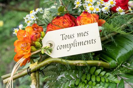 Grusskarte Mit Tulpen Und Franzosisch Text Herzlichen Gluckwunsch