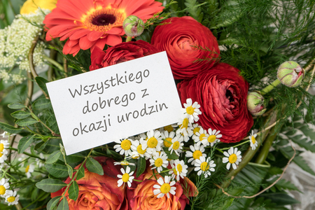 Polish Birthday Greeting Card With Red Flowers Stock Photo Picture